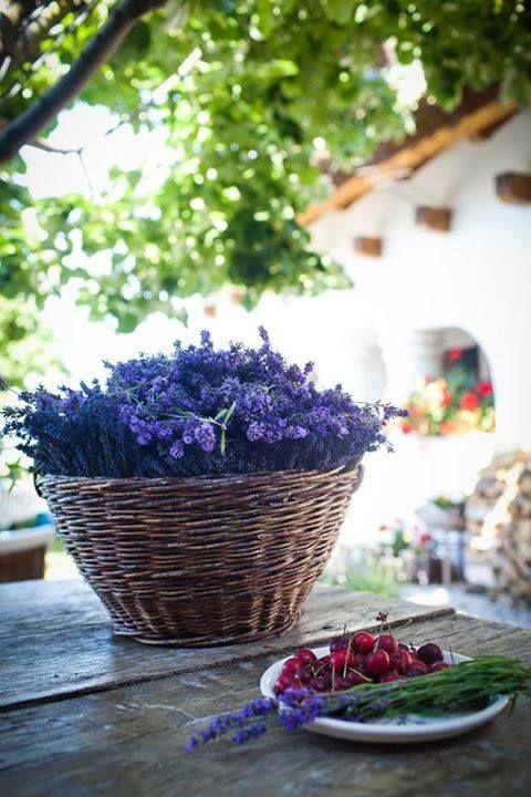My inner landscape…love the basket of lavender