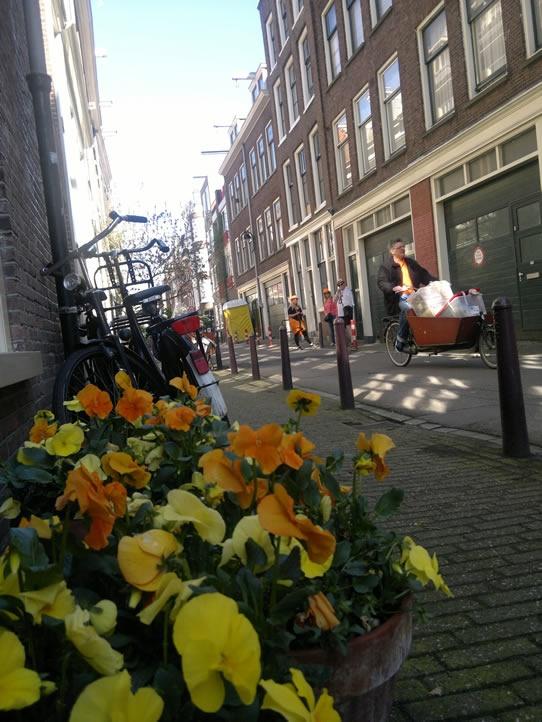 ... flowers in orange and bikes in Jordaan streets...