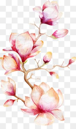 Pin By Mary Clements On Clip Art Etc In 2019 Pinterest Flower