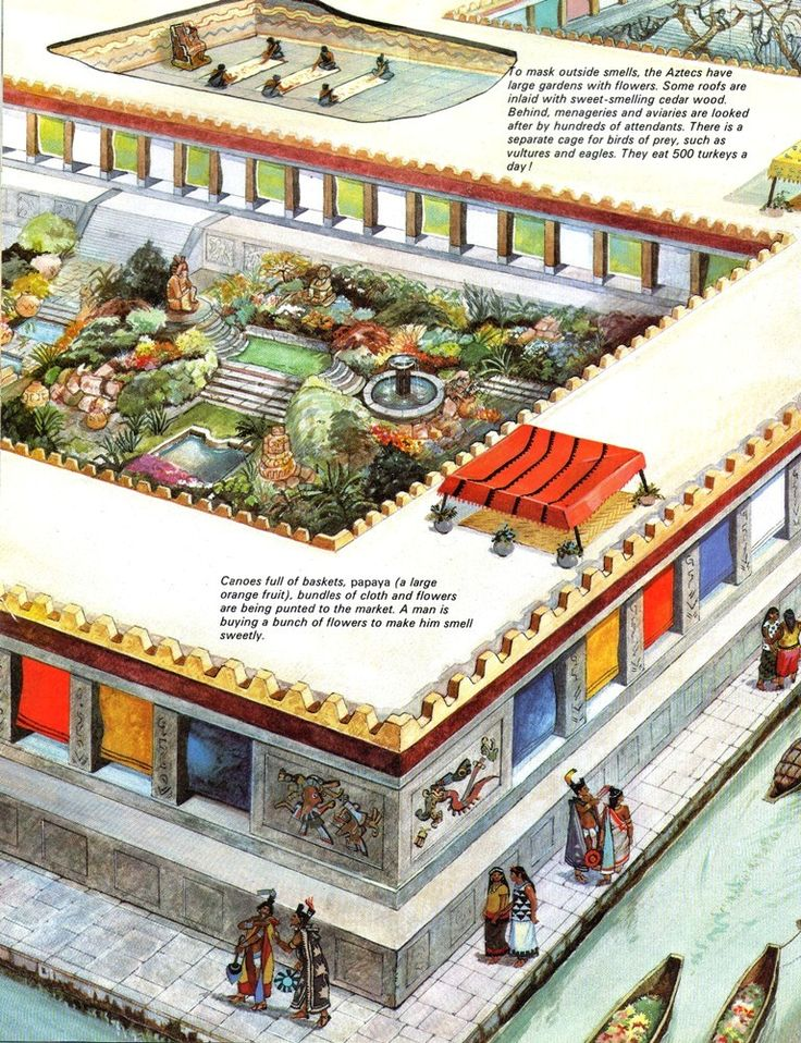 297 best aztec civilization images on pinterest mexico