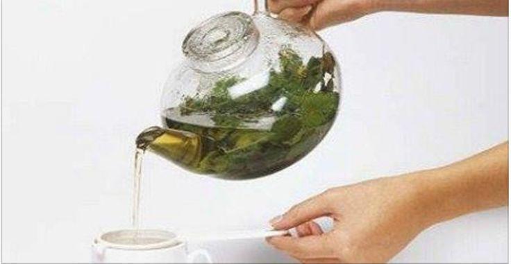 Este chá expulsa por completo o catarro dos pulmões e combate asma e alergia! | Cura pela Natureza