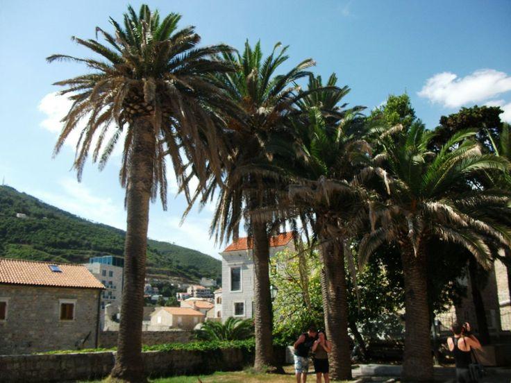 Budva - Montenegro #Czarnogóra #Montenegro #Budva #Kotor #Św #Stefan #Nikola #Podgorica #Adriatyk #Matuszyk #Adriatyk #Kotor