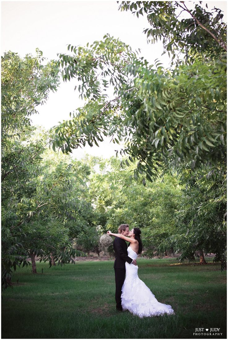 #Love & #Marriage under our Pecan Trees <3 Annali & Gerard   Just Judy Photography, Cape Town Wedding #Photographer @judy