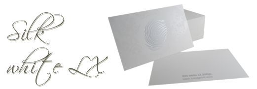 Business card Silk white LX