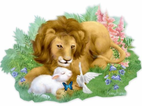 Spring Lion and Lamb by Penny Parker spring easter flowers season bunny happy spring