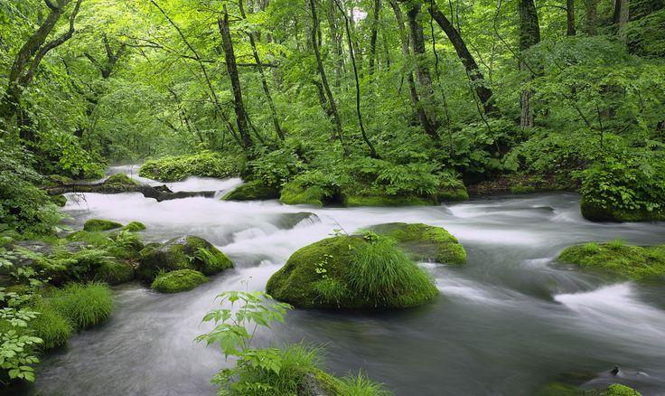 Paisaje de un río, que inspira paz, tranquilidad y