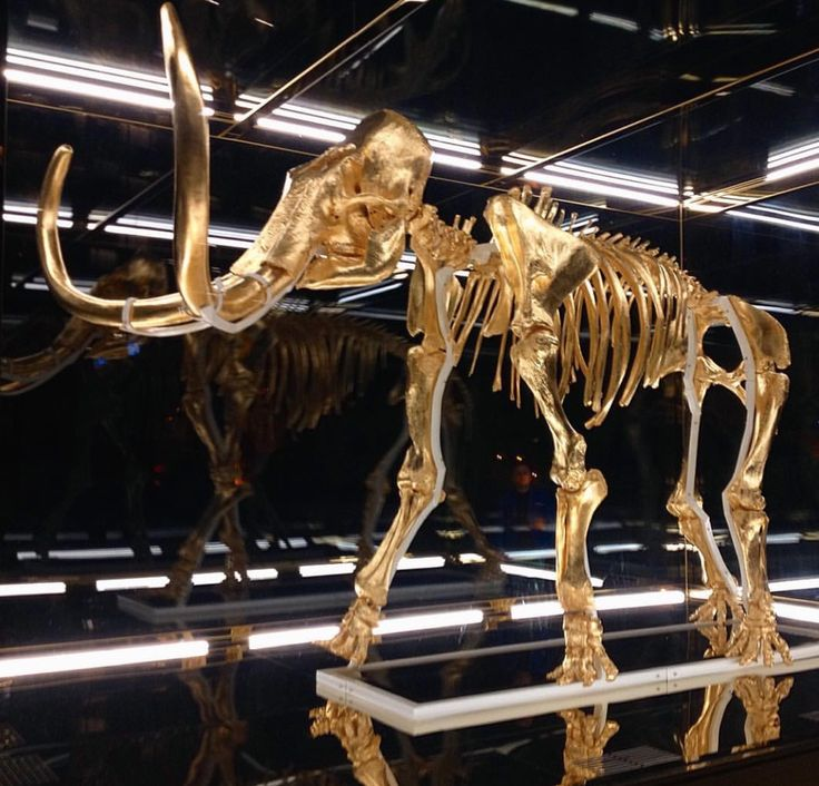 On Exhibit   Damien Hirst's Golden Mammoth & Unicorn Chill by the Pool in Miami   Supertouch
