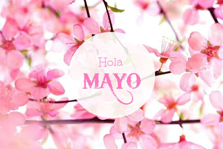 Hola Mayo! Months In A Year, Mayo, Seasons, My Love, Pug, Beautiful, Instagram, Wallpapers, Makeup