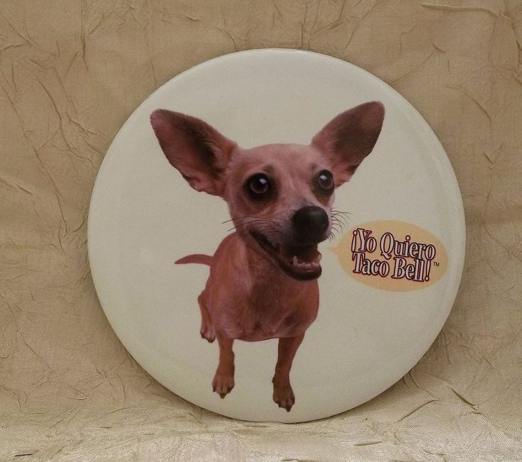"Yo Quiero Taco Bell 6"" Button with Chihuahua"