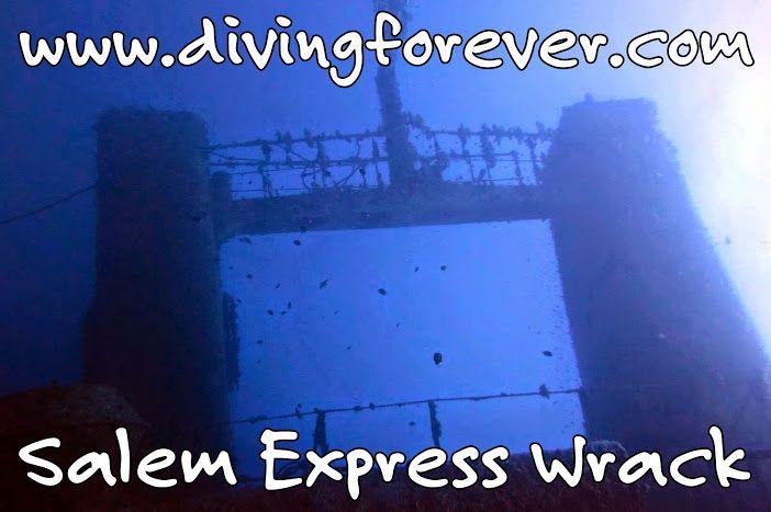 Tauchen Hurghada - Tauchausflüge, Schnuppertauchen, Tauchkurse http://www.divingforever.com/tauchen-in-hurghada-preise.html Wir bieten spezielle Kurse: Nitrox, Wrack tauchen und Tiefen tauchen. Ebenso bieten wir auch einen Tauchgang zum Salem Express Wrack an.
