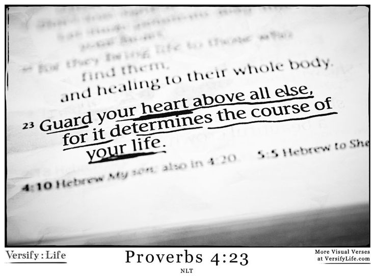 17 Best Images About Proverbs : Bible Verse Images On