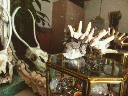 Handmade ring from moose's teeth