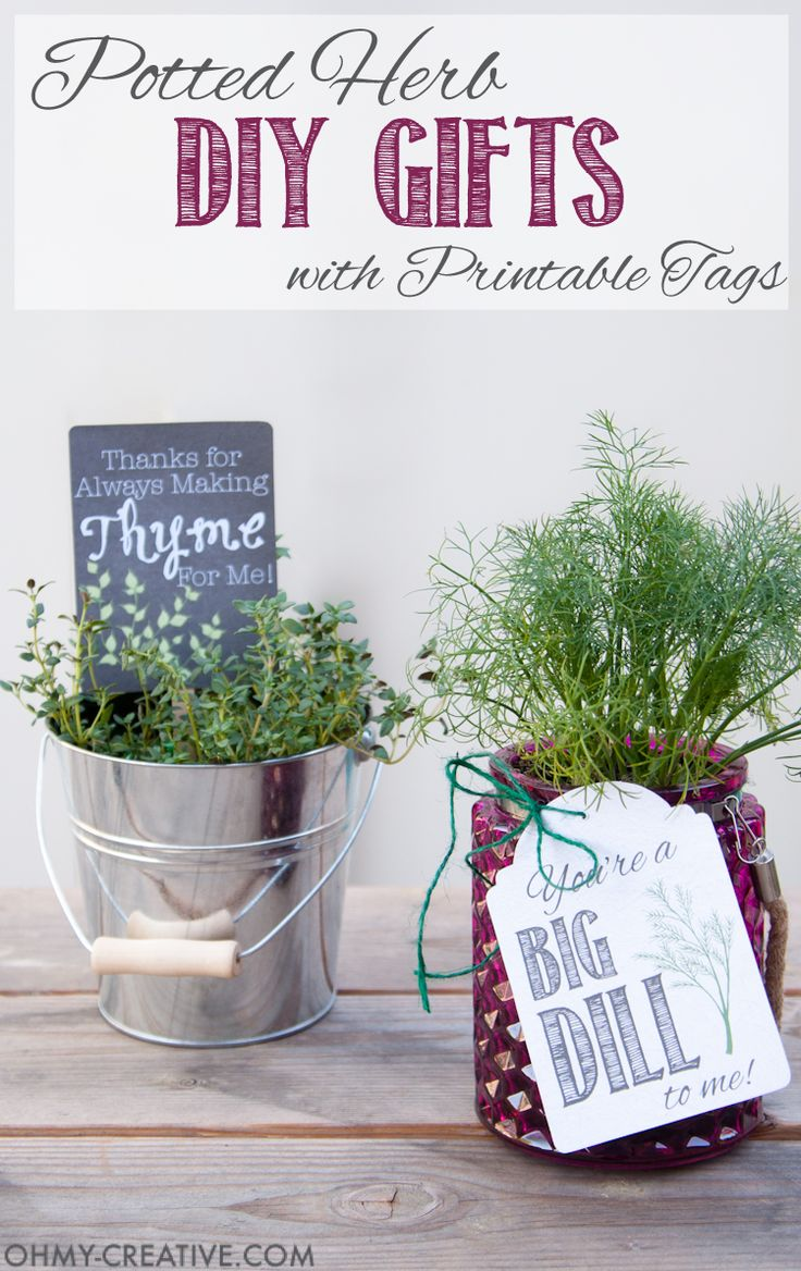 These are the perfect homemade gifts. Make beautiful potted herb DIY gifts with printable tags for Teacher Appreciation gifts or Mother's Day gifts.