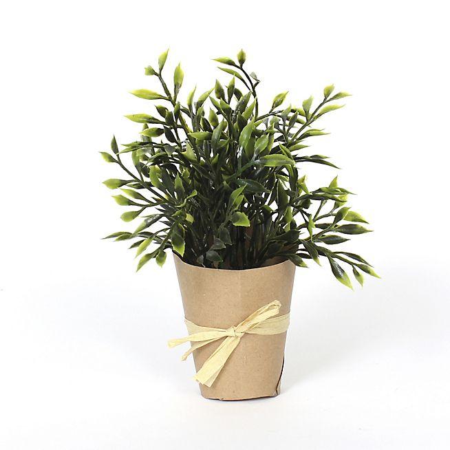 Les 25 meilleures id es de la cat gorie plantes artificielles sur pinterest plantes - Mini plante grasse mariage ...