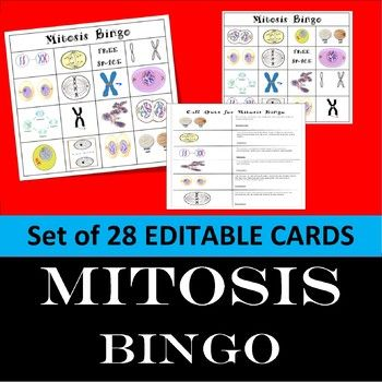 Save Time and Increase student interest with BINGO. Review related pictures with Mitosis Bingo. This lesson includes: 28 different Bingo Cards and Mitosis Call Cards. ALL CARDS ARE EDITABLE The pictures address The Cycle and Mitosis: Somatic Cells, Interphase, Mitosis, Prophase, Metaphase, Anaphase, Telophase, Cytokinesis, Replicate, Centromere, Chromatin, Cell Plate, and Cleavage Furrow.