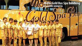 Molto Gold Spa Bus