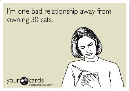 I'm one bad relationship away from owning 30 cats.Crazy Cats, 30 Cat, Bad Relationship Humor, Bad Relationship Ecards, One Bad Relationship Away, Funny, True, Bad Relationships, Crazy Cat Lady