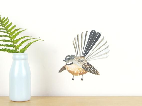 Fantail Bird Wall Decal Tiny New Zealand Birds Kiwiana Wall