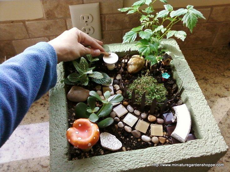 Charlene Staufer created this little garden in a cinder block-type pot that she stained light green. The shiny stones and steppers are laid in a pretty pattern, like jewelry for the garden. The creative layout makes for an interesting design in a very limited space.
