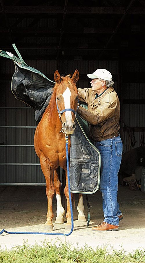 Great article! How to tell if you should blanket your horse, if so, when, how, and what kind of blanket.