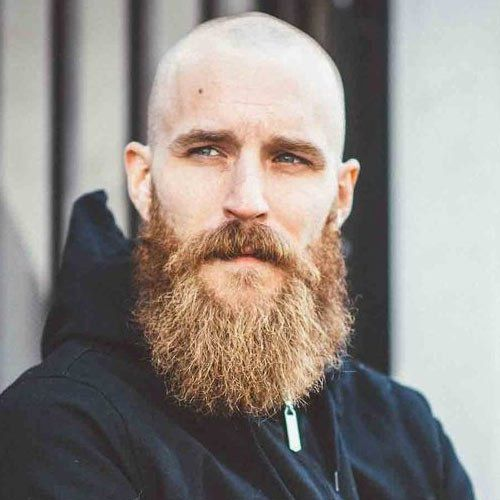 Shaved-Head-with-Full-Beard-Hipster                                                                                                                                                                                 More