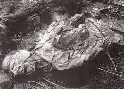 (Aftermath of the Srebrenica massacre) Body of the Srebrenica massacre victim recovered from exhumation site clearly shows blindfold and arms tied behind the back (taken from http://srebrenica-genocide.blogspot.mx)