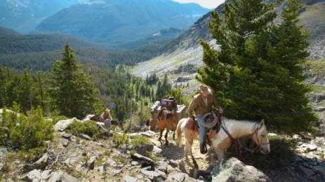 Γιατί οι ΗΠΑ καταδικάζουν σε θάνατο 45.000 άγρια άλογα | TVXS - TV Χωρίς Σύνορα