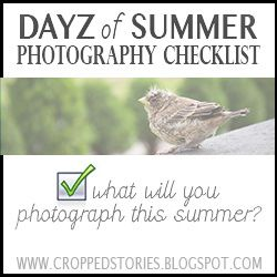 Dayz of Summer Photography Checklist (will you take the challenge)?