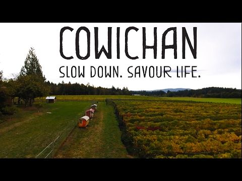 Tourism Cowichan - Unsworth Vineyards - YouTube
