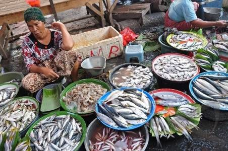 Fish market, Indonesia