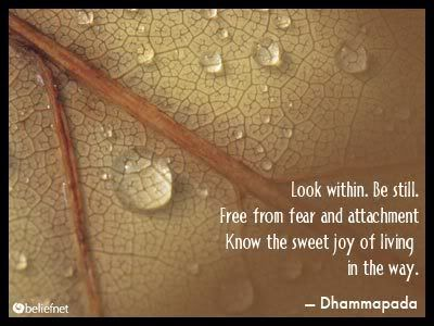 Buddhist Quotes On Attachment   Quote Addicts