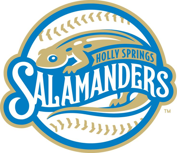 Holly Springs  Salamanders Primary Logo (2015) -