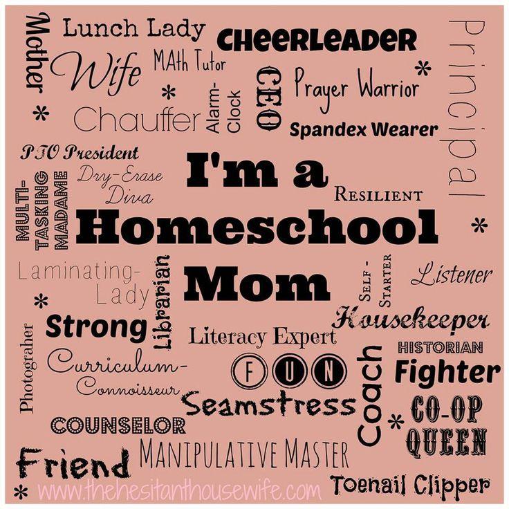 Beautiful Homeschool Mom Job Description Pictures - Best Resume ...