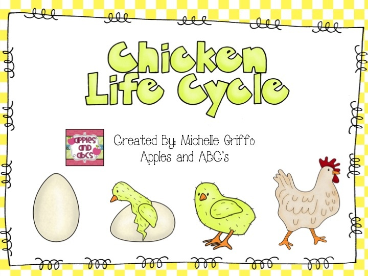 Apples and ABC's: Simple Life Cycle of a Chicken Unit