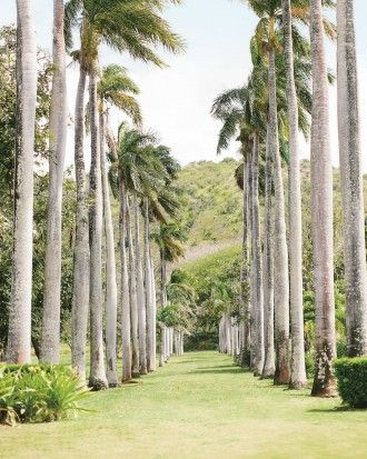 Plan a Private Wedding Weekend at Hawaii's Dillingham Ranch