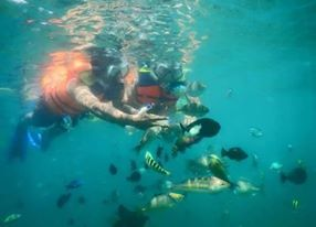 Snorkling at Gili Nanggu