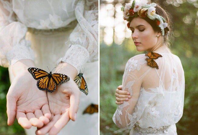 Фотографии Фотосессия с живыми тропическими бабочками | 2 альбома