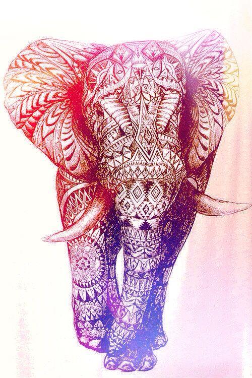 •Elefante Hindú•