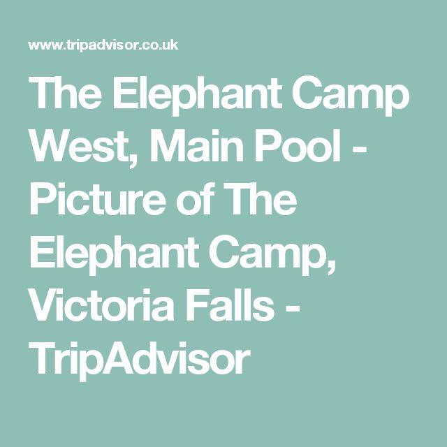 The Elephant Camp West, Main Pool - Picture of The Elephant Camp, Victoria Falls - TripAdvisor