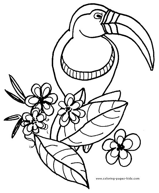 682a1ca7594237e2ce776f019da4ab23  animal coloring pages coloring pages for kids