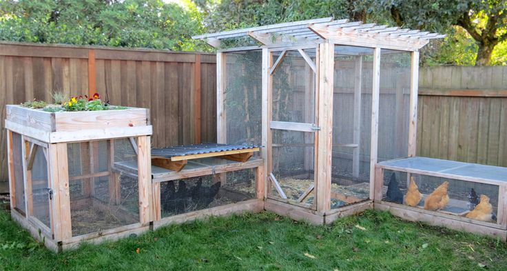The Garden Run plans show you how to build secure run extensions that connect to your coop and safely expand your chickens' yard.