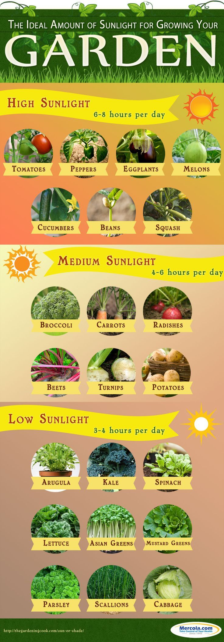 Get your dose of gardening ideas and important tips to consider for the ideal amounts of sunlight for your plants as recommended by Dr. Mercola http://www.mercola.com/infographics/gardening.htm