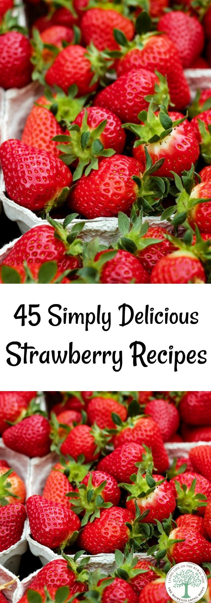 Here are over 45 delicious ways to enjoy these sweet berries in this Ultimate Simple Strawberry Recipes Collection! The Homesteading Hippy via @homesteadhippy