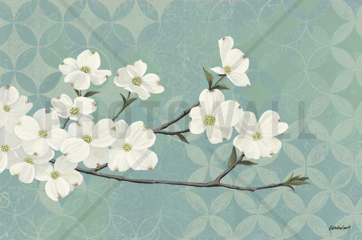 Dogwood Blossoms - Wall Mural & Photo Wallpaper - Photowall