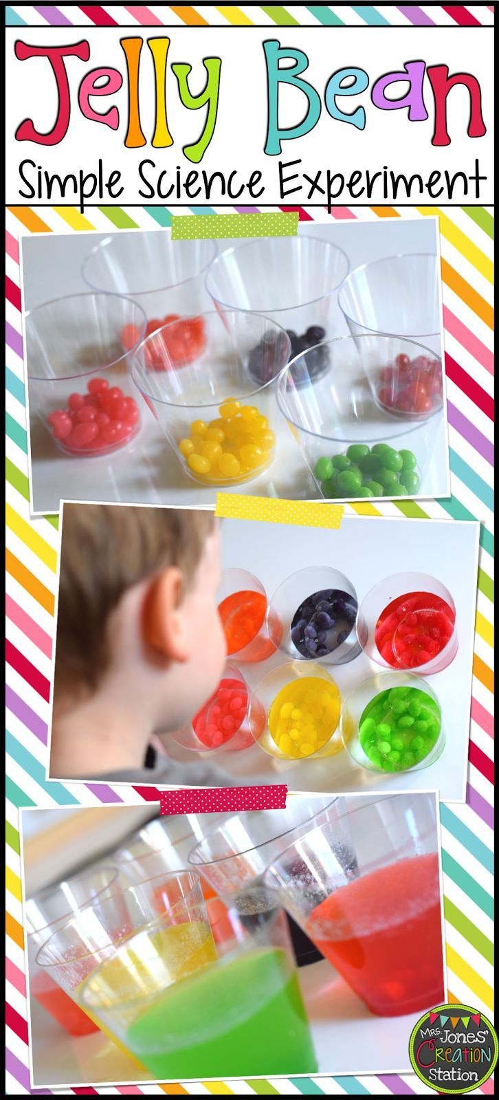 Jelly Bean Simple Science Experiment + Free Experiment page printable