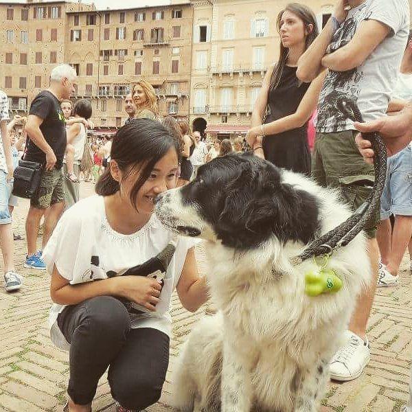 子供の頃に飼っていた愛犬にそっくりな子に会えた🎵と娘がとっても嬉しそうに…パチリ。 人間は世の中に3人はそっくりな人がいるっていいますよね。 犬もかな? #愛犬#懐かしい#イタリアにて#私も会いたいよ