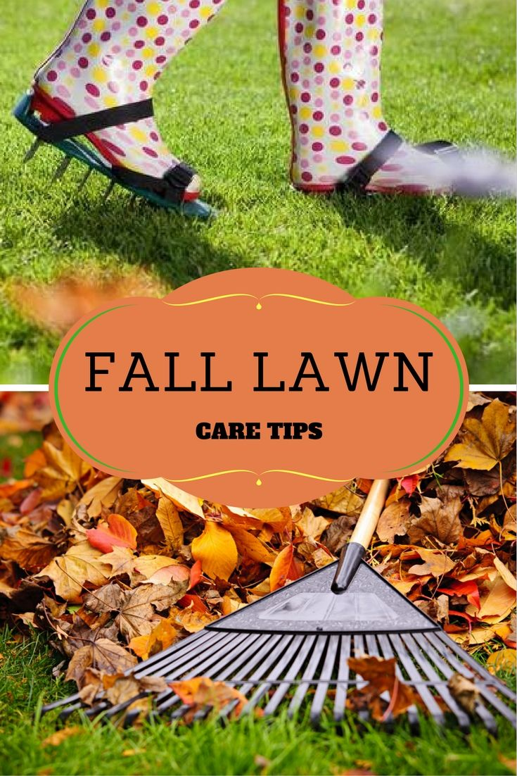 ordinary fall lawn care Part - 4: ordinary fall lawn care nice design