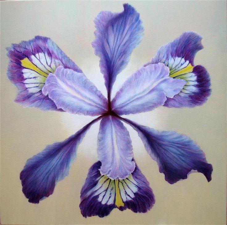 wild_blue_iris.jpg (784×779) Iris flowers, Iris art