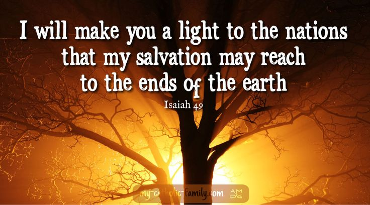 Today's Mass readings: I will make you a light to the nations, that my salvation may reach to the ends of the earth. http://www.my-catholic-family.com/4477/mass-readings-for-solemnity-of-the-nativity-of-saint-john-the-baptist/