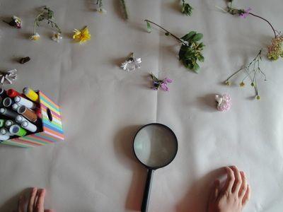 ΠΡΑΤΗΡΗΣΗ ΛΟΥΛΟΥΔΙΩΝ - BIG STEPStiny feet